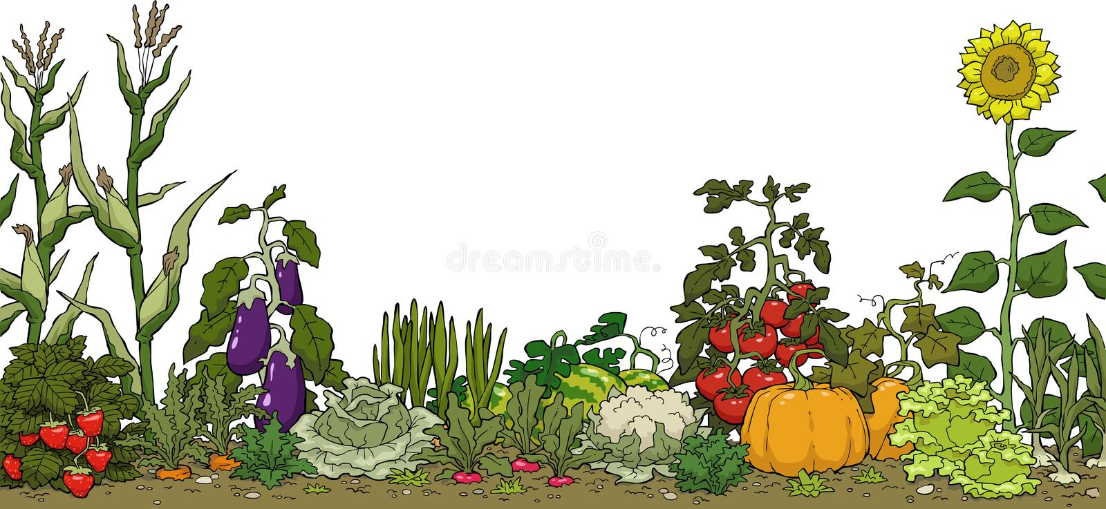 Vegetable garden bed royalty free illustration