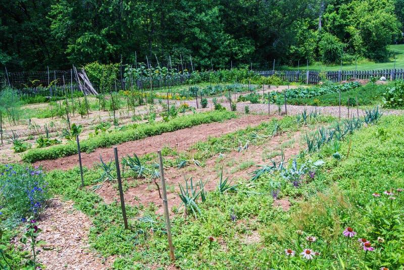 Vegetable Garden at Booker T. Washington National Monument stock image