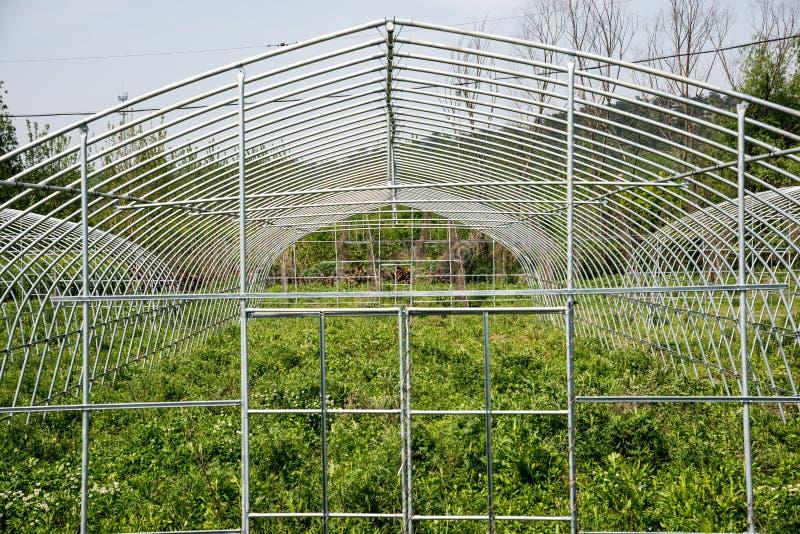 Vegetable greenhouses shelf royalty free stock photos