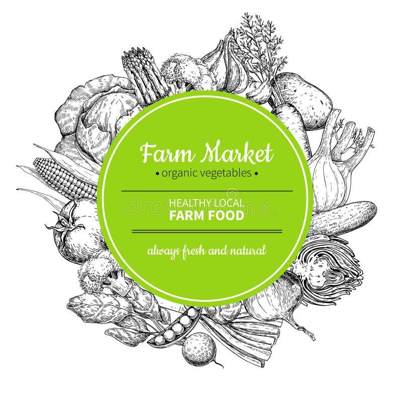 Vegetable hand drawn vintage vector frame illustration. Farm Market poster. Vegetable hand drawn vintage vector illustration. Farm Market frame poster vector illustration