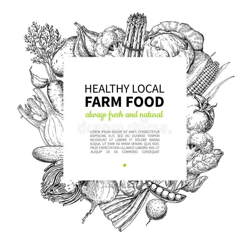 Vegetable hand drawn vintage vector frame illustration. Farm Market poster. Vegetarian set of organic products. Detailed food drawing. Great for menu, banner royalty free illustration