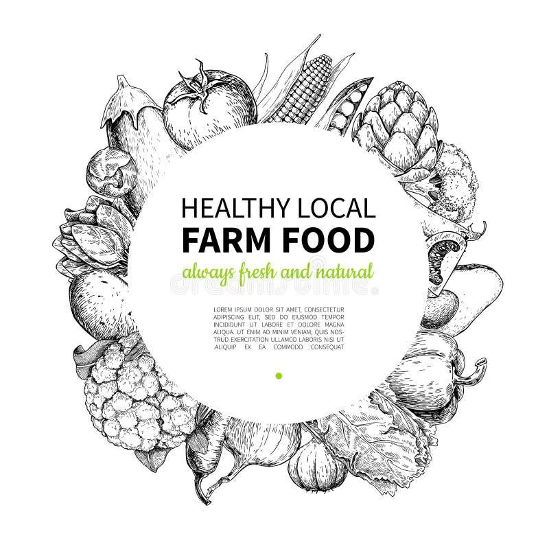 Vegetable hand drawn vintage vector frame illustration. Farm Market poster. Vegetarian set of organic products. Detailed food drawing. Great for menu, banner vector illustration