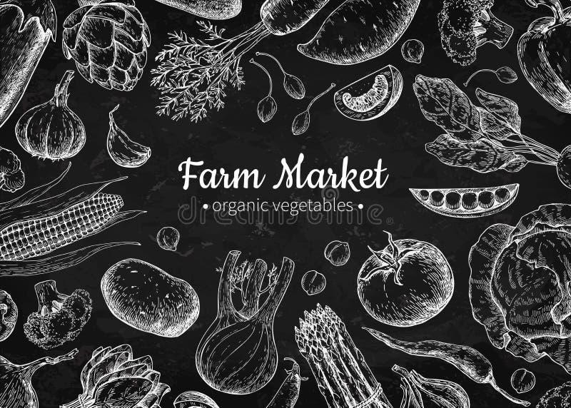 Vegetable hand drawn vintage vector illustration. Farm Market poster. Vegetarian set of organic products. Vegetable chalkboard hand drawn vintage vector vector illustration