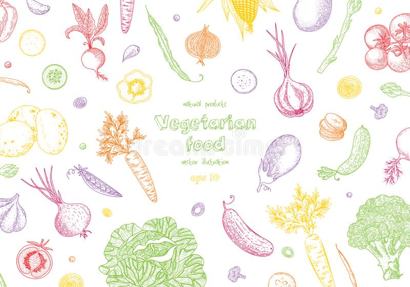 Vegetable hand drawn vintage vector illustration. Vegetarian set of organic products. Can be used for wrapping paper. Street festival, farmers market, country stock illustration