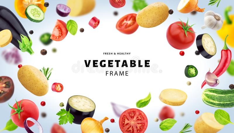 Vegetable isolated on white background, frame made of different flying vegetables, herbs and spices, with copy space. Fresh and healthy food template stock illustration