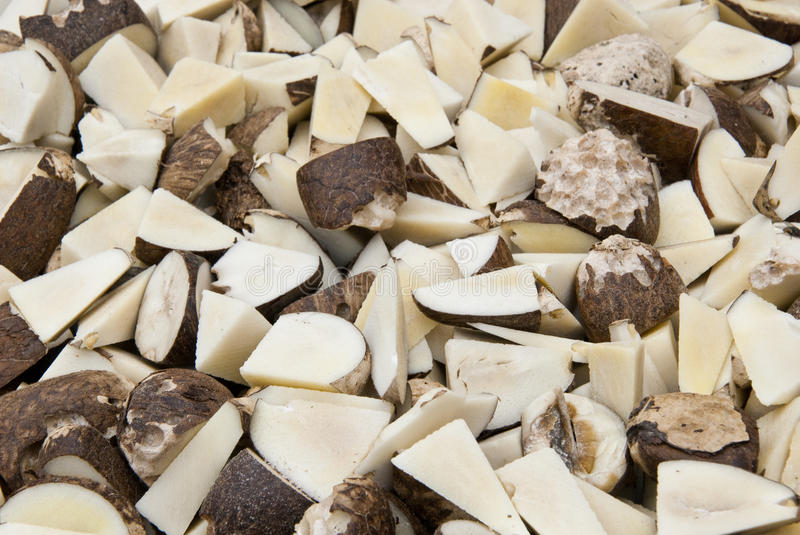 Download Vegetable Ivory - Tagua Seeds Cut Stock Photo - Image of hemicellulose, fruits: 43236634