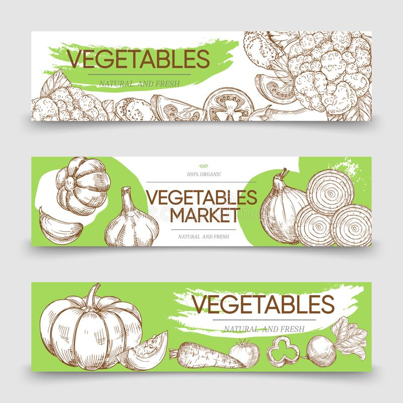 Vegetable markets horizontal banners template with vector sketch vegetables royalty free illustration