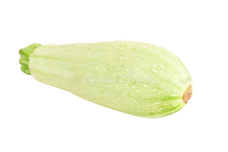 Vegetable Marrow  Zucchini Stock Photo