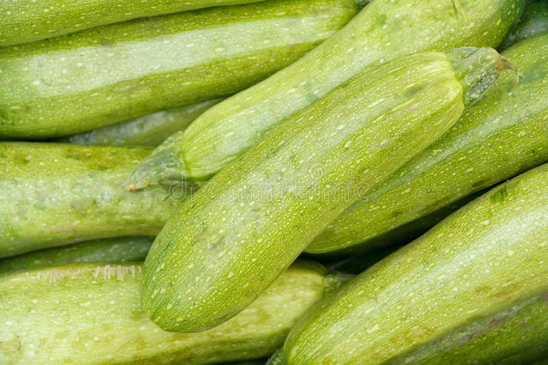 Download Vegetable marrow stock image. Image of background, macro - 21169511
