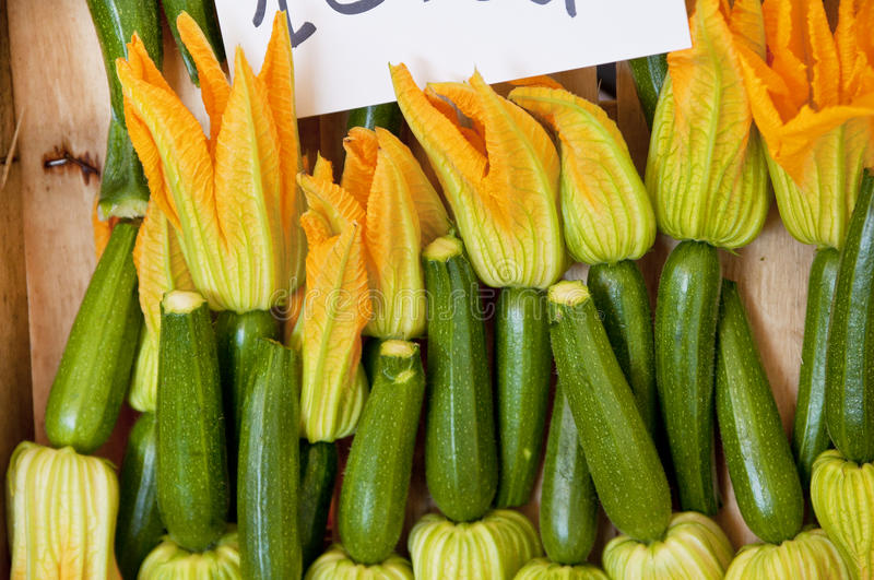 Vegetable Marrows royalty free stock photo