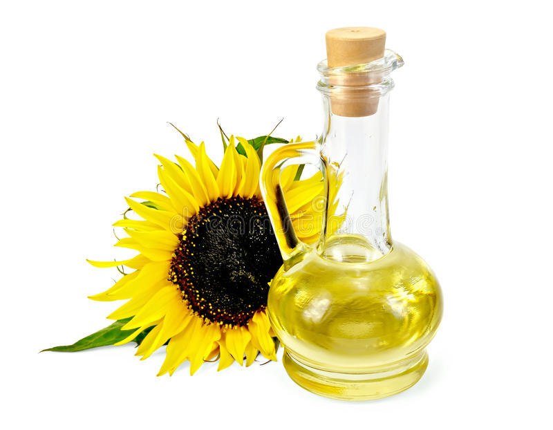Vegetable oil in a carafe with a sunflower. Vegetable oil in a glass carafe with a sunflower with a light shade on white background royalty free stock images