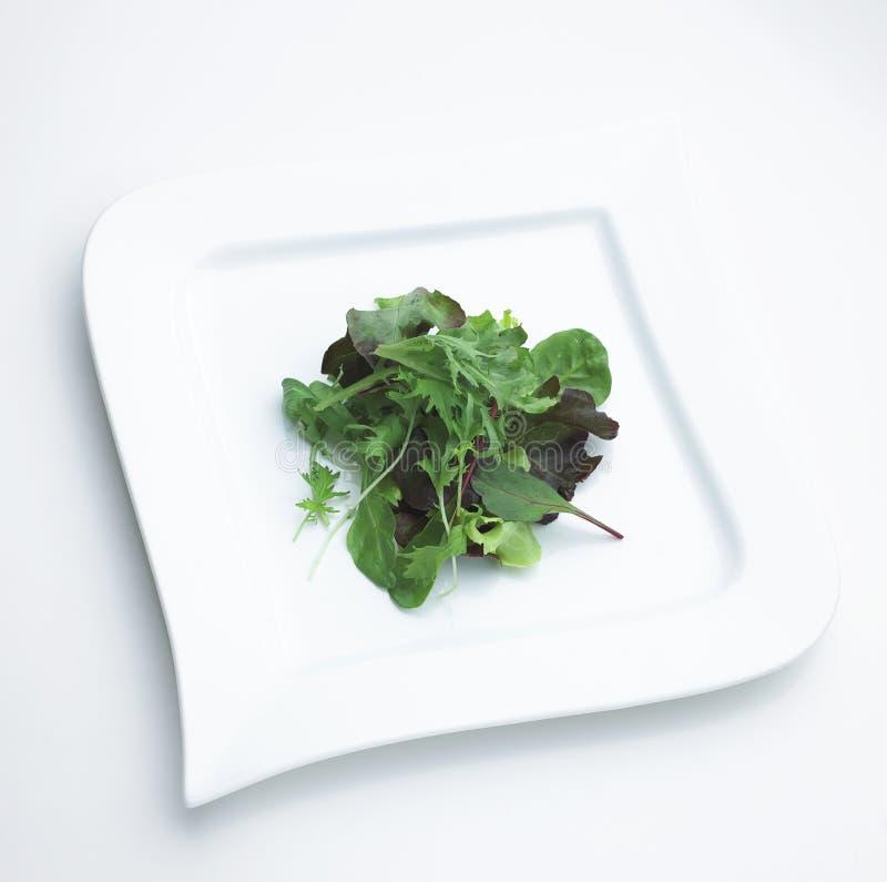 Download Vegetable salad dish stock image. Image of natural, light - 23733541