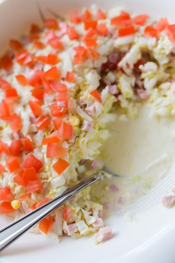 Vegetable Vegetable Salad. Fresh vegetable salad  on white royalty free stock photo