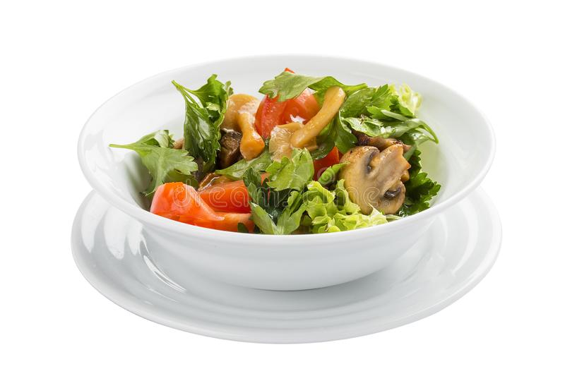 Vegetable salad with mushrooms and greens stock photography