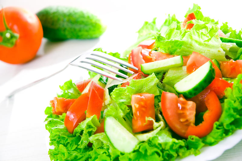 Download Vegetable salad on plate stock photo. Image of tasty - 25402254