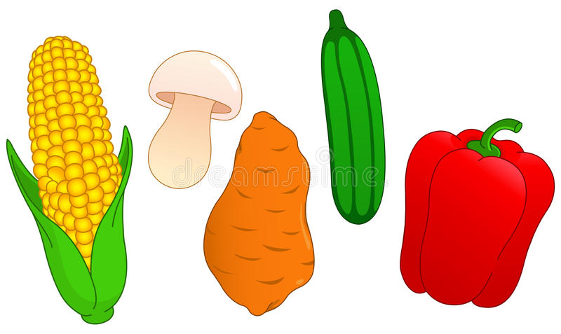 Vegetable set 3 royalty free illustration
