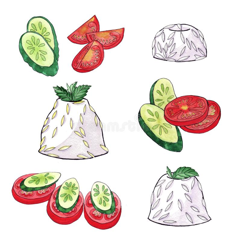 Vegetable slicing Tomatoes Cucumber Rice - Watercolor sketch. The rice is neatly formed stock illustration