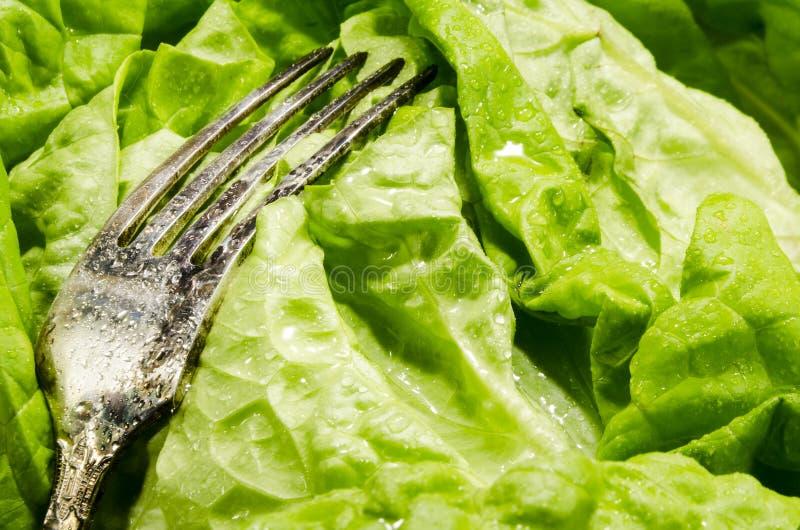 Vegetable slimming healthy food full of vitamins royalty free stock images