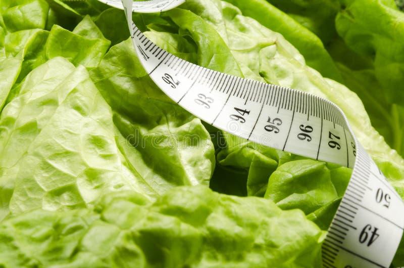 Vegetable slimming healthy food full of vitamins stock photos