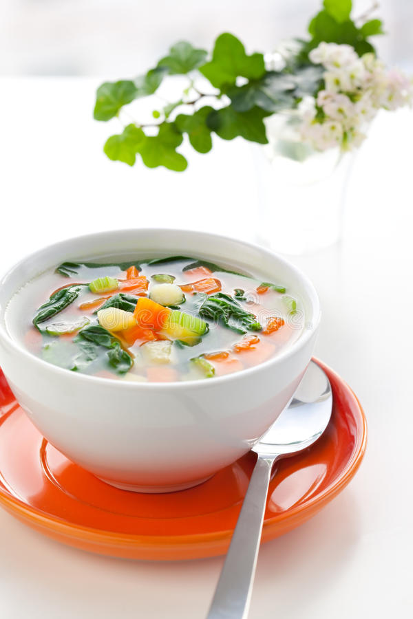 Vegetable soup. With potato,carrot,celery and spinach royalty free stock image