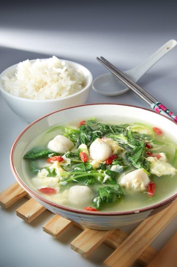 Download Vegetable Soup stock photo. Image of organic, garlic - 21724414