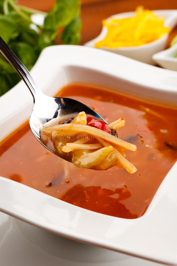 Vegetable soup. Asian food - vegetable spicy soup stock photography