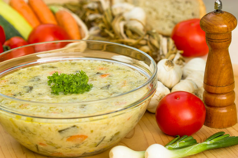 Vegetable soup. Is part of the diet vegetarians stock photos