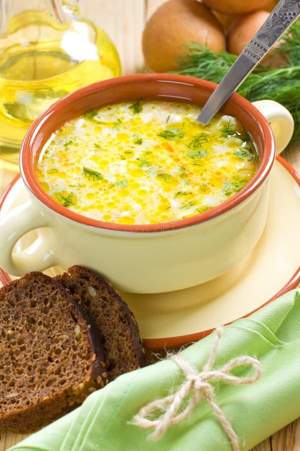 Download Vegetable Soup Stock Image - Image: 26208131