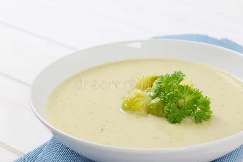 Vegetable soup with Brussels sprouts stock photos