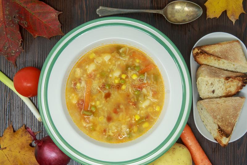 Vegetable soup with fresh vegetables and autumn theme royalty free stock photo