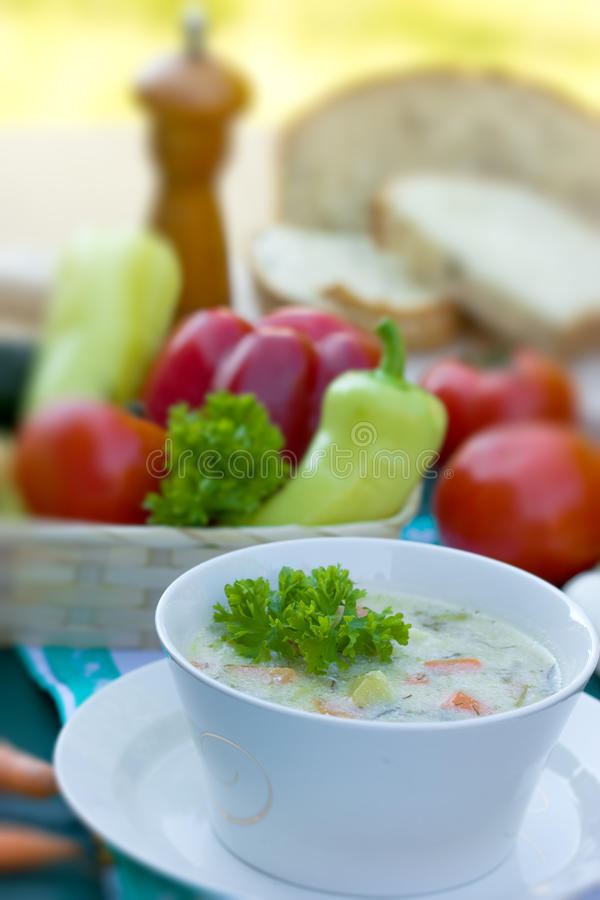 Vegetable soup - vegetarian broth - minestrone royalty free stock images