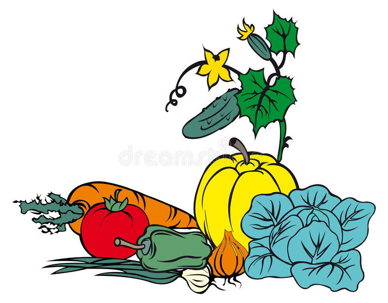 Vegetable still-life royalty free illustration