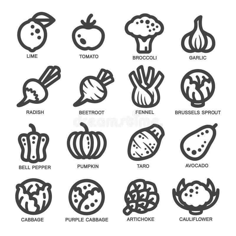 Vegetable thin line icon stock illustration