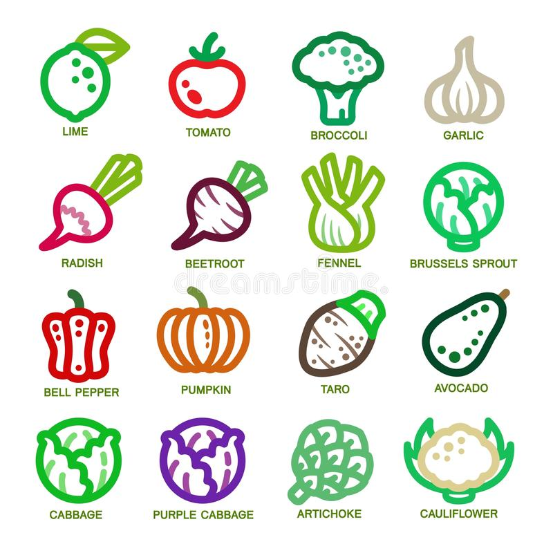 Vegetable thin line icon vector illustration