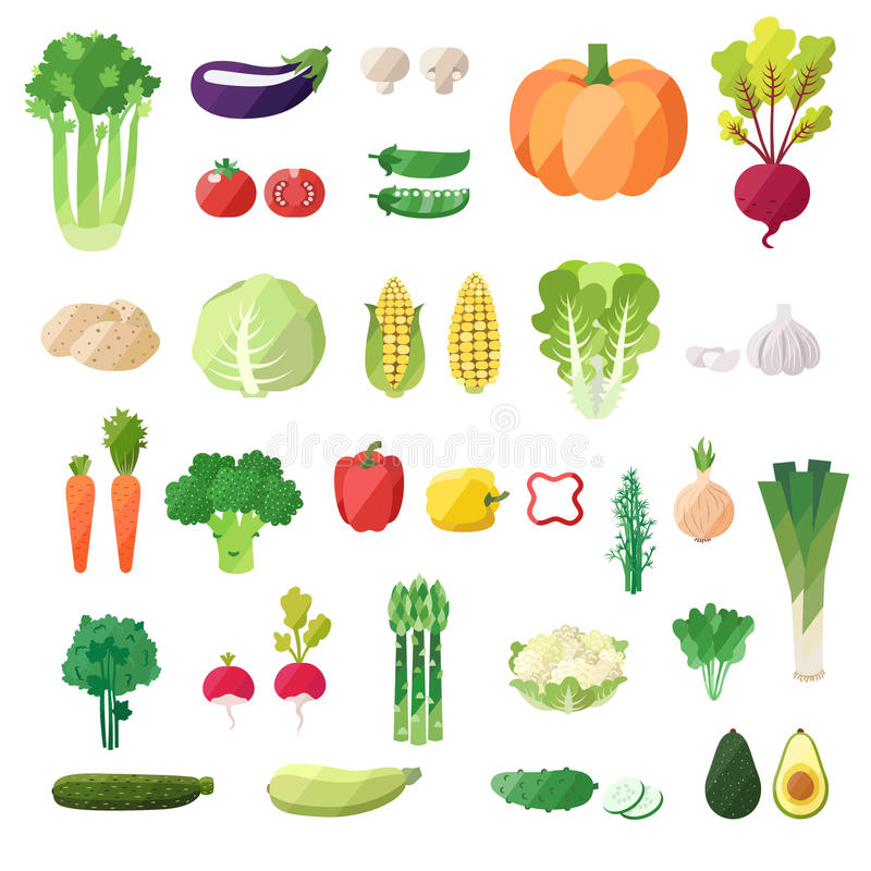 Vegetable vector set. Modern flat design. objects. Vegetable icons royalty free illustration