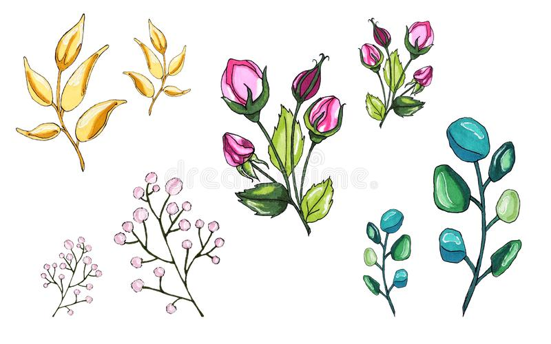 Vegetable world. Flowers and twigs. Delicate twigs of flowers vector illustration