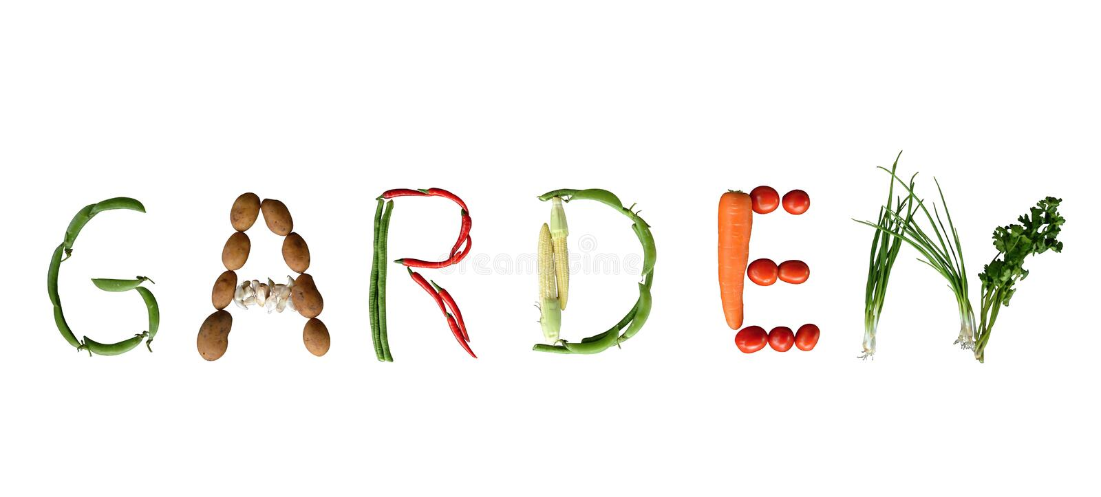 Letters Garden: Vegetable Writing GARDEN Stock Image. Image Of Diet
