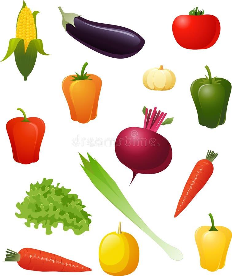 Vegetables. Set of various vegetables illustration stock illustration