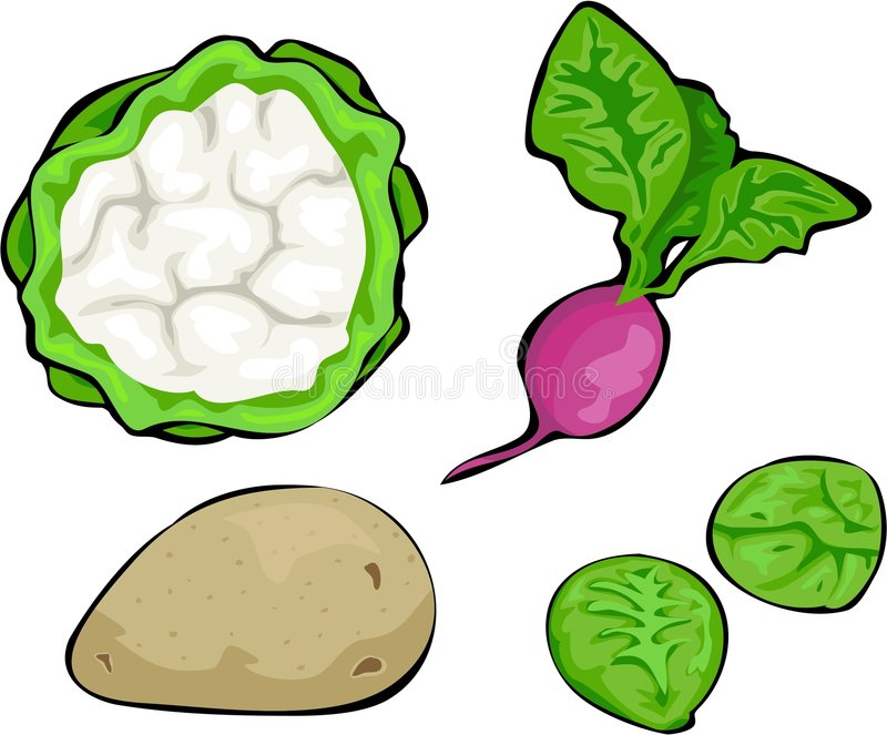 Download Vegetables stock vector. Illustration of cauliflower, isolated - 162735