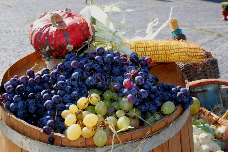 Download Bunches Of Grapes And Vegetables - Ripe Bunches Stock Image - Image: 27094569