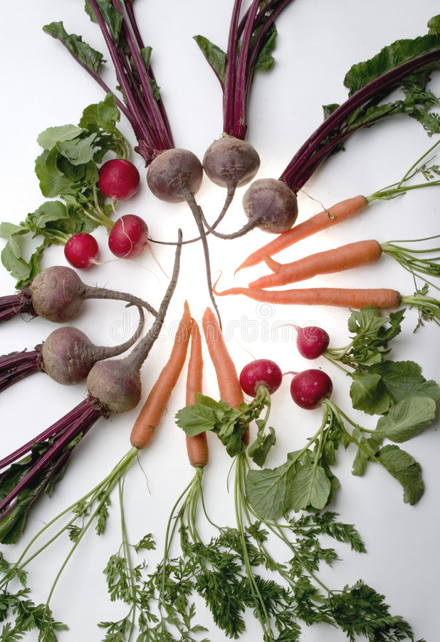 Vegetables. In a circle shining like the sun stock images