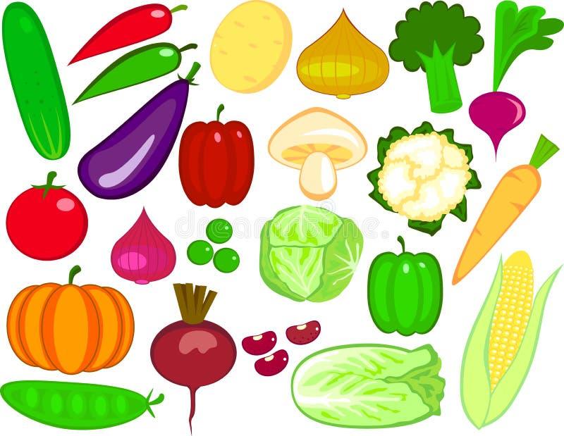 Download Vegetables stock vector. Image of leaf, fruit, mushroom - 9030152