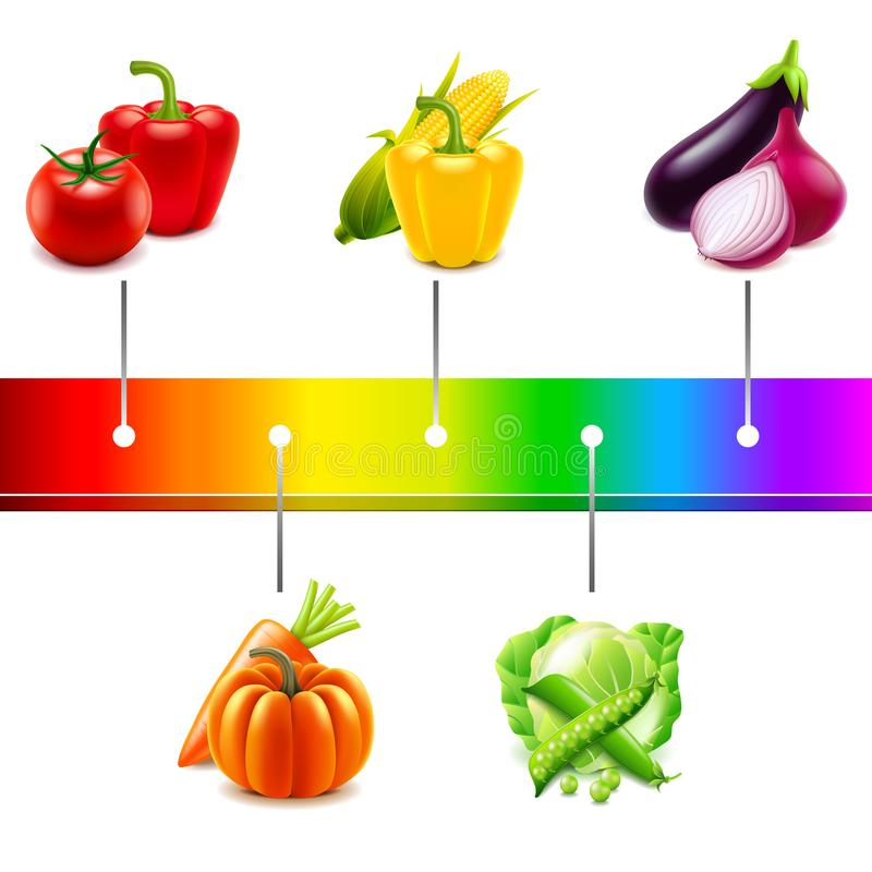 Vegetables around rainbow strip isolated vector. Vegetables around rainbow strip isolated photo-realistic vector illustration stock illustration