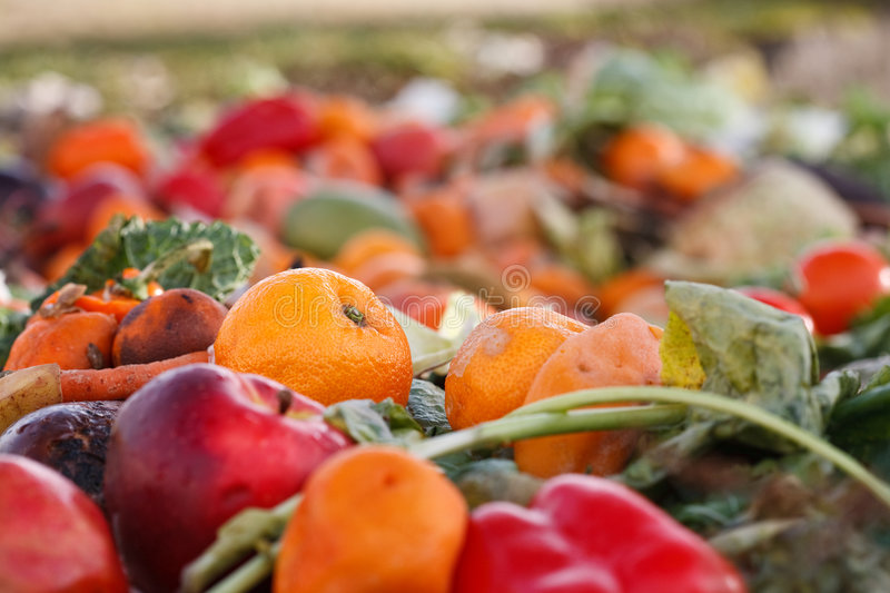 Download Vegetables as compost stock photo. Image of pepper, food - 8660772