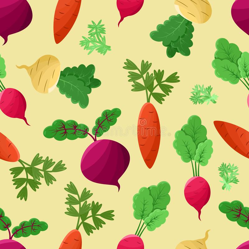 Vegetables Background, Vector Illustration. Vegetables background vector illustration with green sprouts, colorful beetroots, carrots and swedes, shpinat and stock illustration