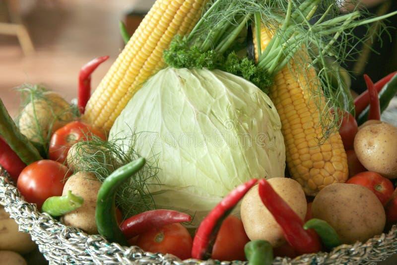Download Vegetables in basket stock photo. Image of basket, tomato - 7333962