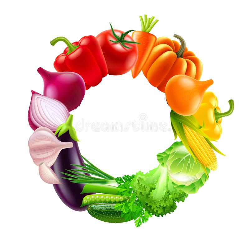 Vegetables in circle rainbow colors vector background. Vegetables in circle rainbow colors photo-realistic vector illustration royalty free illustration