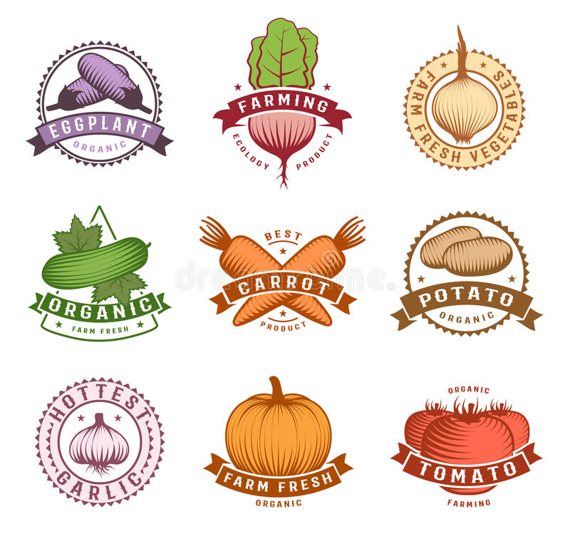 Vegetables Colorful Labels Set. With potato pumpkin and cucumber beet tomato and eggplant isolated vector illustration vector illustration