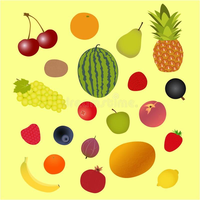 Vegetables for cooking soup, a set of vegetables, vector illustration stock image