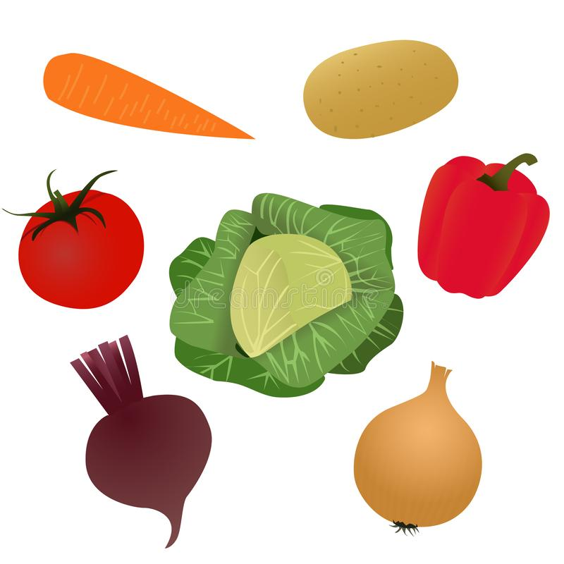 Vegetables for cooking soup, vector illustration royalty free stock images